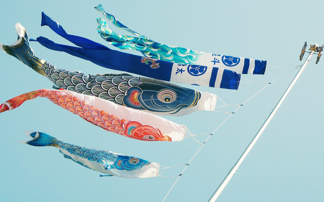 What Makes the Japanese Carp Kites special